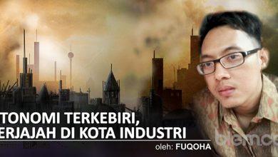 Fuqoha