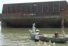 Photo of Kapal Tongkang Terdampar, Petani Rumput Laut Diperkirakan Alami Kerugian Hingga Ratusan Juta