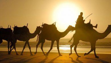 Photo of Inilah Puasanya Para Nabi Sebelum Nabi Muhammad