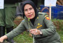 Photo of Bupati Serang Larang PNS Ajukan Cuti Tambahan