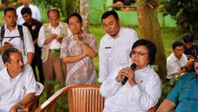 Photo of Tinjau Keberhasilan Skema Imbal Jasa Lingkungan, Siti Nurbaya Kunjungi Cagar Alam Rawa Danau