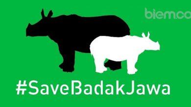 Photo of Jawaragama Banten Galang Donasi #SaveBadakJawa, Yuk Ikutan!
