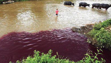 Photo of Limbah Cemari Sungai, 8 Perusahaan Ini Ditutup Pemkab Serang