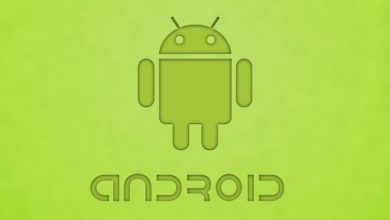 Photo of Inilah Nama Asli dari Logo Android Buatan Irina