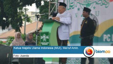 Photo of Ma'ruf Amin: Konstitusional dan Demokrasi Harus Tetap Dipatuhi di Negara Ini