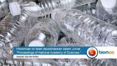 enzim pemakan plastik