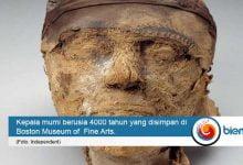 Photo of Akhirnya! Misteri Kepala Mumi Berusia 4000 Tahun Berhasil Dipecahkan FBI