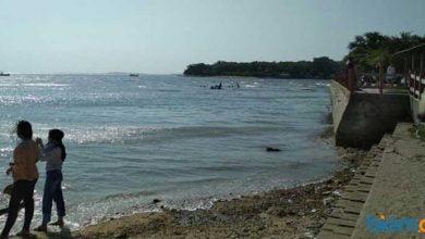 pulau cipir