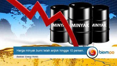 harga minyak bumi