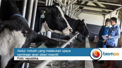 Photo of Kemenperin Akan Berikan Insentif untuk IPS yang Bermitra dengan Peternak Sapi Perah Lokal