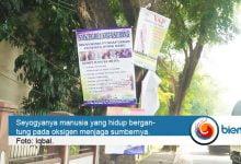 """Photo of Mapelba Kecam Oknum yang """"Menghiasi Pohon"""" Pakai Spanduk"""