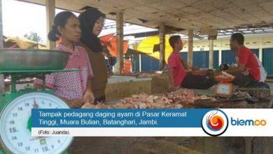 Photo of Pasokan Daging Ayam di Pasar Keramat Tinggi Hanya Capai 50 Kg Per Hari