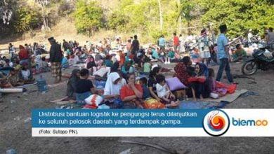 distribusi bantuan lombok