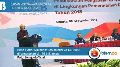 CPNS 2018