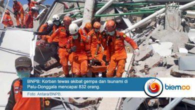 Korban Gempa dan Tsunami Palu