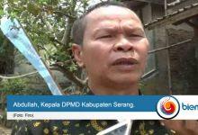 dpmd kabupaten serang