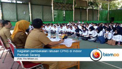 cpns kabupaten serang