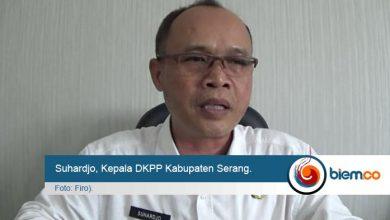 Photo of DKPP Kabupaten Serang Klaim Cadangan Pangan Pemerintah Aman