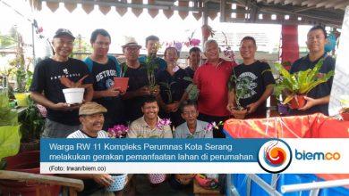 Photo of Warga RW 11 Perumnas Kota Serang Gagas Kelompok Eleven Farm