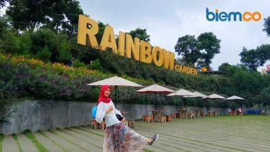 Raibow Garden
