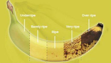 manfaat pisang benyek