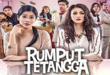 Photo of Film Drama Keluarga 'Rumput Tetangga' Tayang April Ini