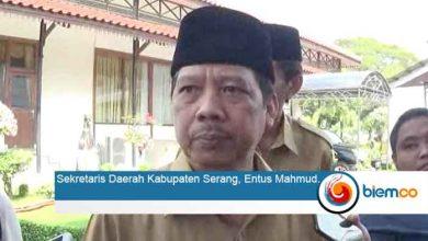 Entus Mahmud