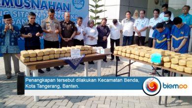 Photo of BNN Banten Sita 150 Paket Ganja di Wilayah Tangerang