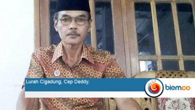 Cep Deddy