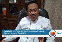 Dinas Pertanian Banten