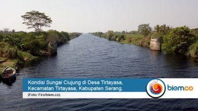 sungai ciujung tercemar