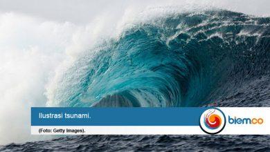 tsunami pantai selatan jawa
