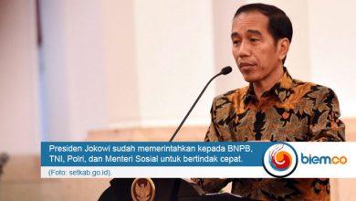 Photo of Jokowi Minta Jajarannya Bertindak Cepat Tangani Situasi Pasca Gempa Banten