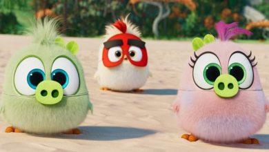 Photo of 'The Angry Birds Movie 2', Penyelamatan Pulau Babi dan Burung
