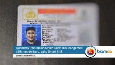 Smart SIM