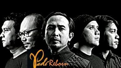 padi reborn