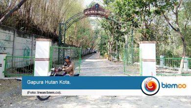 Photo of Hutan Kota Milik Pemkot Serang Tak Terawat