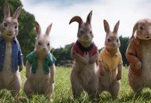 Photo of 'Peter Rabbit 2: The Runaway' Segera Tayang di Bioskop Indonesia