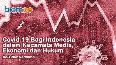 Photo of Anis Nur Nadhiroh: Covid-19 bagi Indonesia dalam Kacamata Medis, Ekonomi, dan Hukum