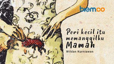 Photo of Cerpen Wildan Kurniawan: Peri Kecil Itu Memanggilku Mamah