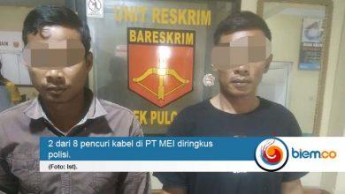 Photo of Dua Pelaku Pencurian Kabel di PT MEI Diringkus Polisi