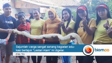 Photo of Komunitas CIKAL dan Amis Jambu Rescue Edukasi Warga Soal Reptil
